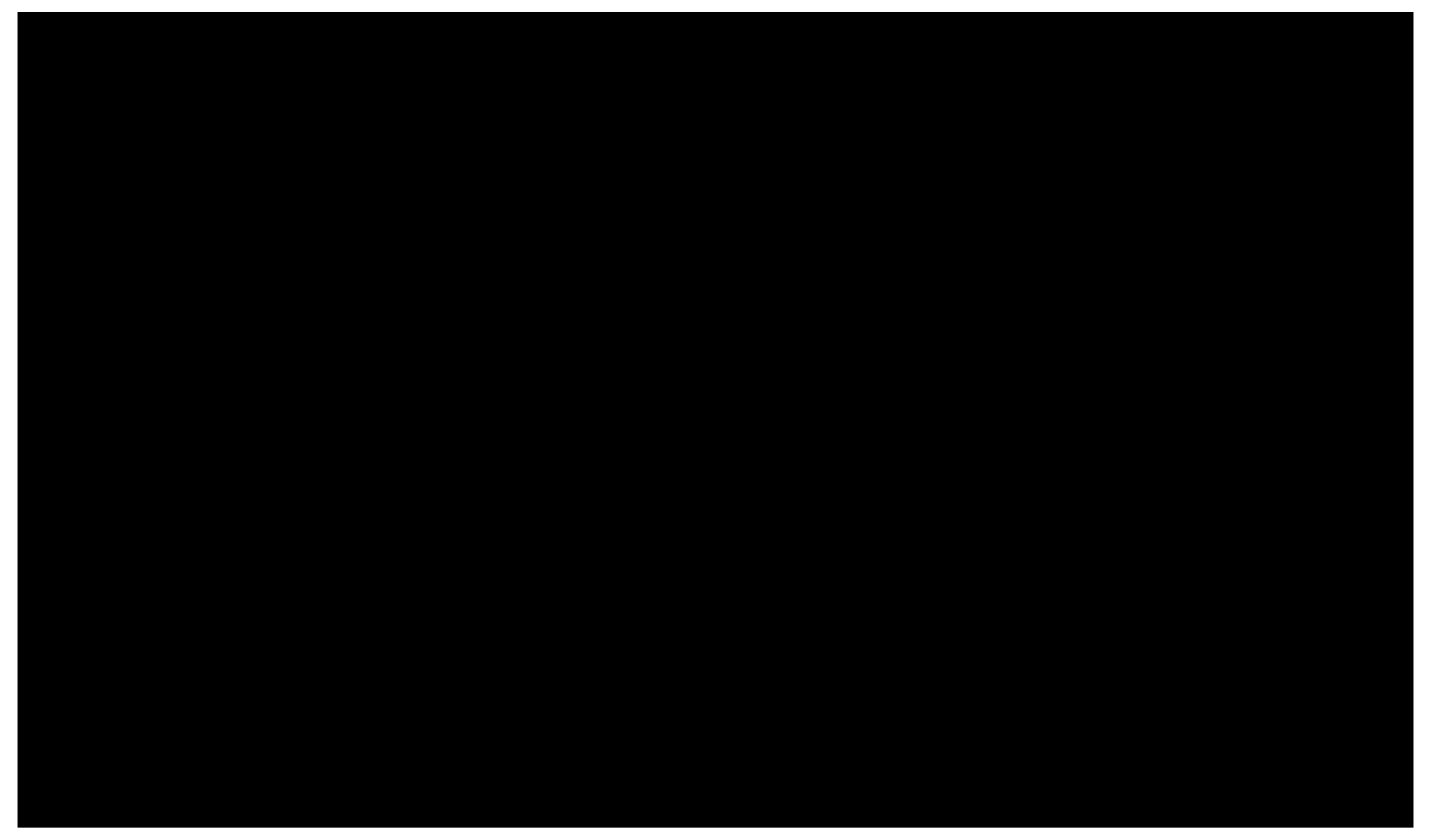 2_dip_logo_black_statement.png